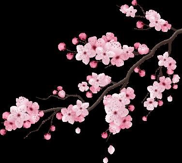 Branche d'arbre en fleurs